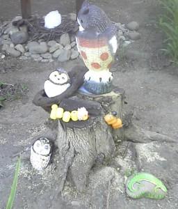 камни совы