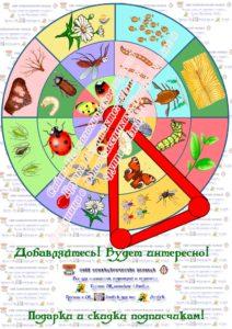 кольца луллия, диск, насекомые, питание, кто что ест, шаблон