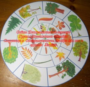 Круги Луллия, вращающиеся диски, лэпбук, макеты, своими руками, деревья, плод, лист