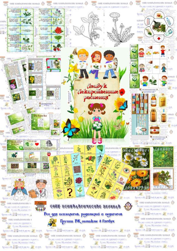 Лэпбук, лекарственные растения, растения, экология, воспитание, купить, шаблоны, кармашки