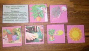 Цветы, лэпбук, купить, скачать, кармашки, правила ухода, комнатные, полевые, цветовод