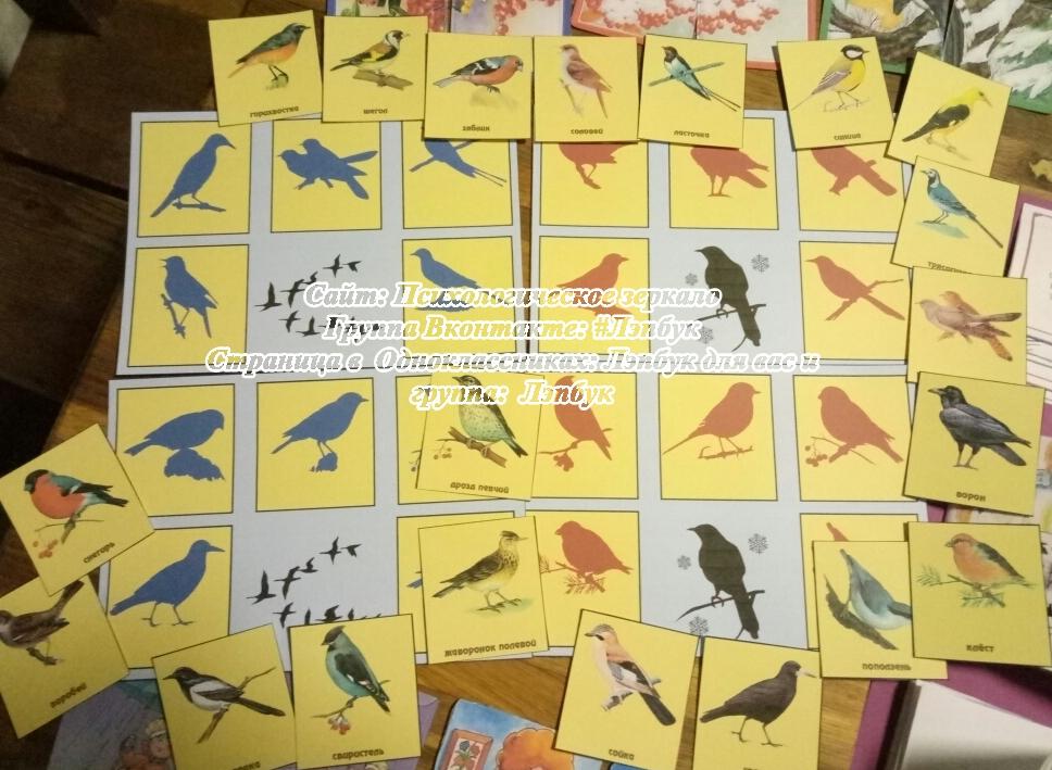 Лэпбук, птицы, перелетные, зимующие, комушка, кармашки, скачать, купить, шаблоны кармашков,своими рукамиЛэпбук, птицы, перелетные, зимующие, комушка, кармашки, скачать, купить, шаблоны кармашков,своими руками