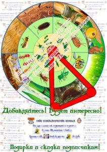 Круги Луллия, вращающиеся диски, лэпбук, макеты, своими руками ,насекомые, среда обитания