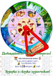 Круги Луллия, вращающиеся диски, лэпбук, макеты, своими руками, птицы, среда обитания