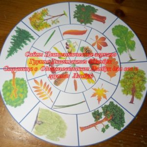игра, круги Лулия, купить, шаблоны, деревья, домашние животные