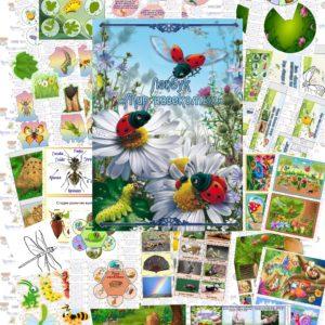 Лэпбук, насекомые, купить, своими руками, кармашки, шаблоны, скачать,
