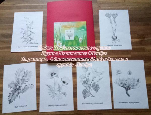 Красная книга растений, купить, лэпбук, своими руками, скачать, экология