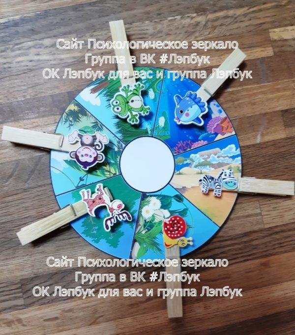 Игра, пуговицы, прищепки, дом, где чей, распределение, развитие речи, болото, лес, море, саванна, луг, джунгли